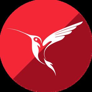 Embarcadero InterBase 2020 (лицензия Server), 25 пользователей, IBMX17ELEWM25