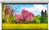 Купить Экран Lumien MASTER Large Control