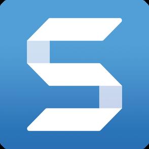 TechSmith Corporation TechSmith SnagIt (продление техподдержки коммерческой лицензии), на 3 года. Количество пользователей, SNG499REN3