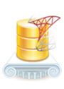 Devart SDAC Standard (продление подписки), Подписка Site на 2 года, 300878742