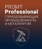 PROMT Professional 21 «Горнодобывающая промышленность и металлургия»