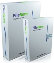 ByStorm FileSure Defend Windows