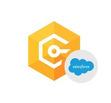 Devart dotConnect for Salesforce (лицензия Professional), Лицензия Site + подписка на обновления и техподдержку в течение 3 лет, 300878467
