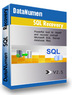 DataNumen SQL Recovery 2.5