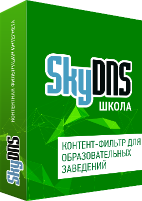 SkyDNS.Школа Z