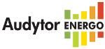 Sankom Audytor Energo (годовая подписка версии 2 0)