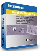 DataNumen Database Recovery 2.0