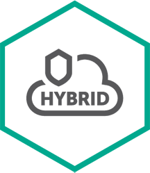Kaspersky Security для виртуальных и облачных сред