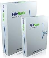 ByStorm FileSure (Audit) Windows