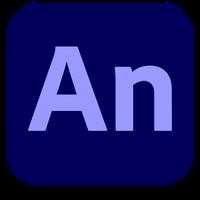 Adobe Systems Adobe Flash Professional CC (Academic Education Named Licenses), годовая подписка Enterprise