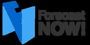 IngeniousTeam Forecast NOW (бессрочная лицензия), Корпоративная