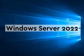 Microsoft Windows Server Standard 2019 (бессрочная лицензия), Single 2License NL Each Additional Product Core