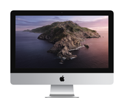 Apple 21.5-inch iMac: 2.3GHz dual-core 7th-generation Intel Core i5 (TB up to 3.6GHz)8GB/256GB SSD/Intel Iris Plus Graphics 640
