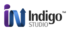 Infragistics Indigo Studio (лицензия на 1 год), Professional