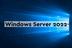 Microsoft Windows Server CAL 2022