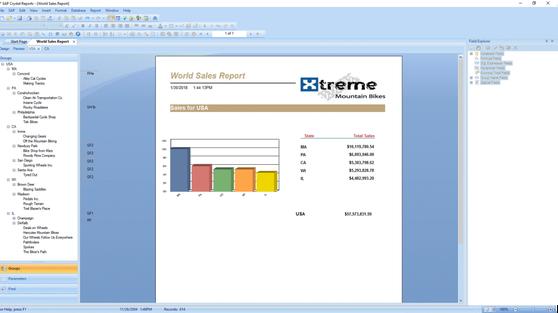 SAP Сrystal Reports