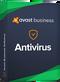 Avast Business AV