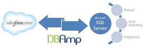 ForceAmp DBAmp (лицензия), на 9 месяц