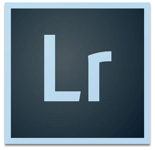 Adobe Systems Adobe Lightroom (лицензии Commercial Licenses для коммерческих организаций), годовая подписка ALL Multiple Platforms Multi European Languages Level 1  1-9