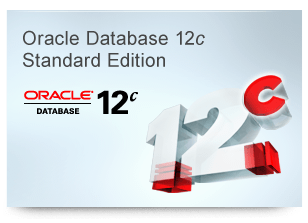 Oracle Corporation Oracle Database Standard Edition 2 (лицензия), процессорная лицензия