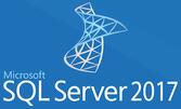 Microsoft SQL Server Standard Edition 2017 (лицензия), Single NL Each Additional Product