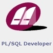 Allround Automations PL/SQL Developer (лицензия PL/SQL Developer), 100 пользователей, 8994.100
