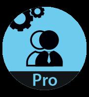 4D Team Developer Professional 15 (лицензия для 2 пользователей)