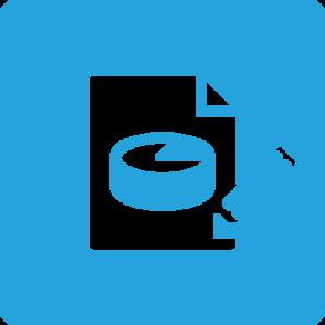 Developer Express Reporting Subscription (лицензия)