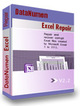 DataNumen Excel Repair 2.2.