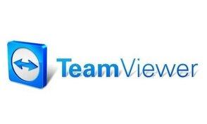TeamViewer Remote Management