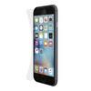 Belkin Защитная пленка для экрана iPhone 6 Plus