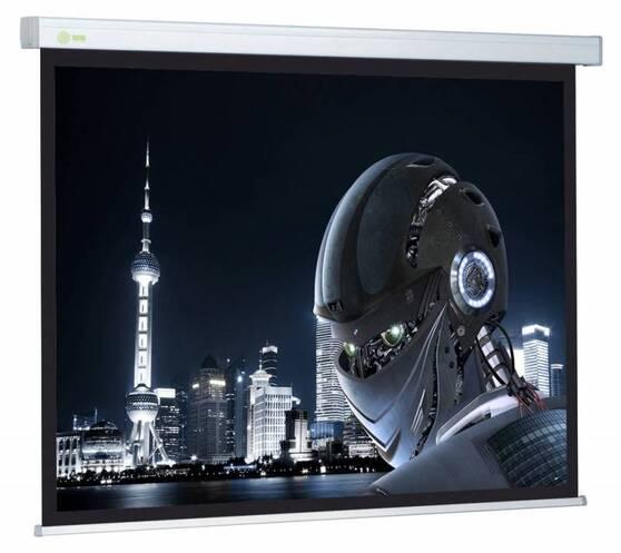 Экран Cactus Wallscreen CS-PSW-127X127
